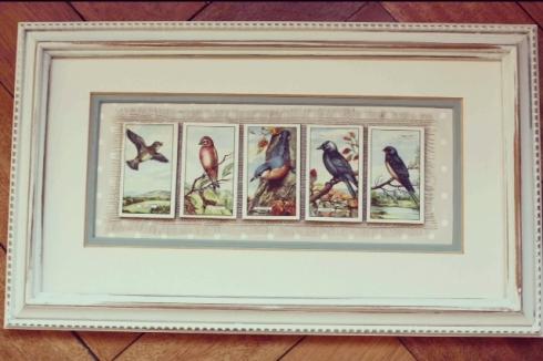 Framed vintage British Bird cigarette cards picture by createvintage.com {available at Unique Chique, Alton}