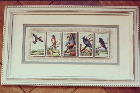 Framed vintage British Bird cigarette cards picture by createvintage.com {available at Unique Chique, Alton}